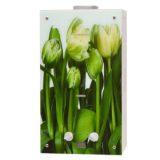 Газовая колонка GENBERG Decor-ECO 210.01 «Тюльпаны»